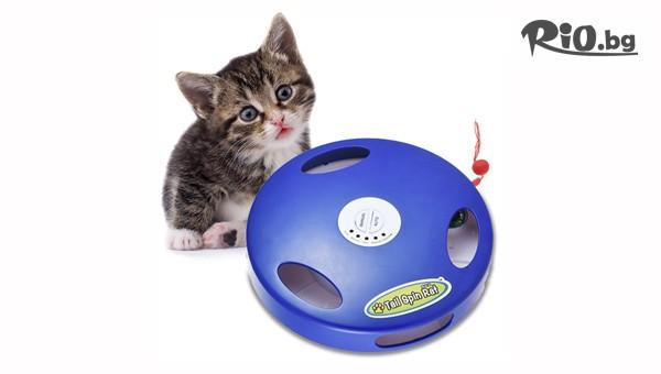 Интерактивна игра за котки #1