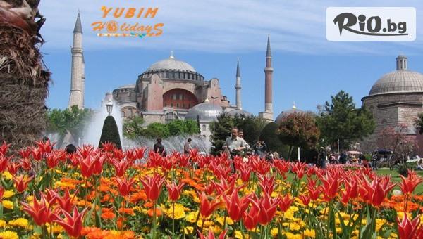 До Истанбул за Фестивала на Лалето #1