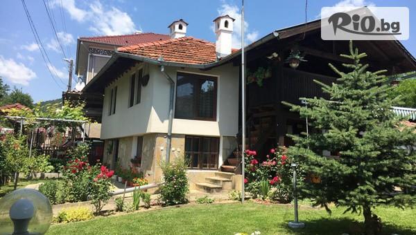 Дядовата къща, Елена #1