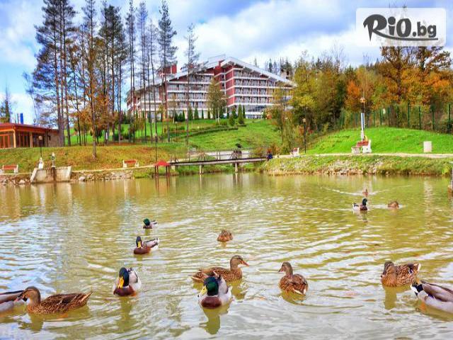 Хотел КООП Релакс  Галерия #6