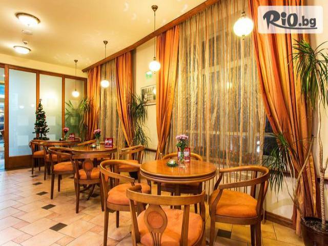 Бутиков хотел Сокол Галерия #16