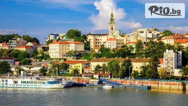 8 Март в Сърбия #1