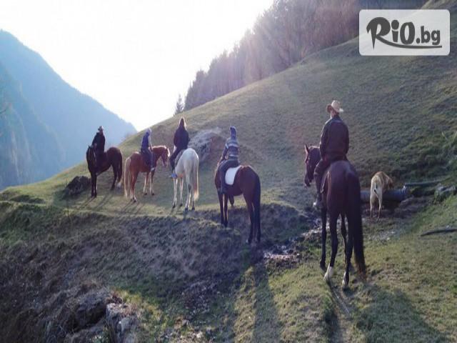 Конна езда Ризов Галерия #4