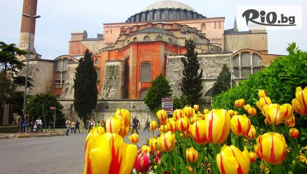 Golden Tulip Istanbul Bayrampasa 5* #1