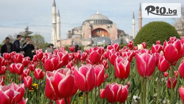 Hotel Yaztur 3*, Истанбул #1