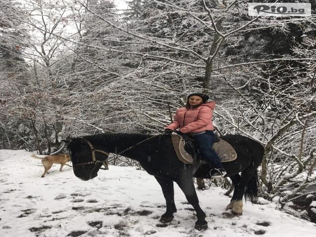 Конна езда Ризов Галерия #2