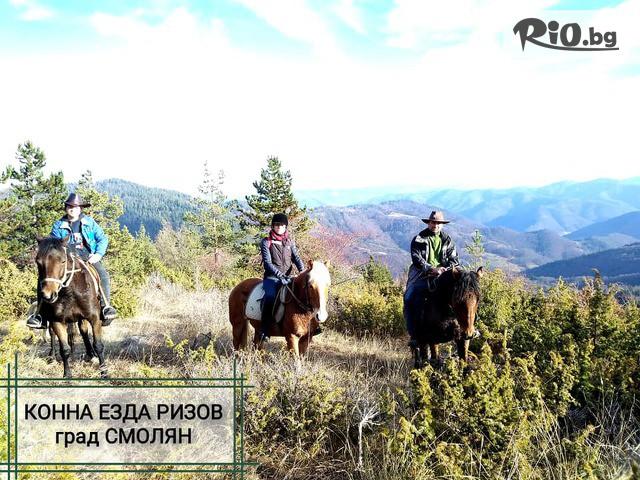 Конна езда Ризов Галерия #1