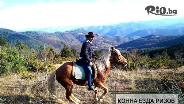 Разходка с коне за 4 човека #1