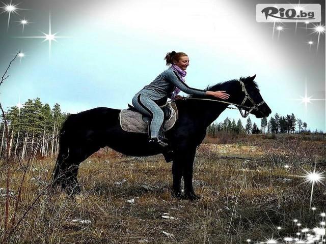 Конна езда Ризов Галерия #8