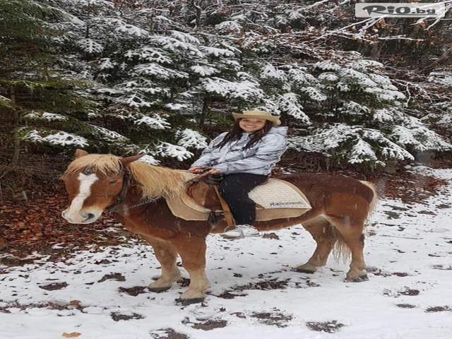 Конна езда Ризов Галерия #5