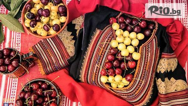 Празник на черешата в Кюстендил #1