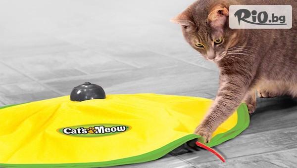 Забавна интерактивна игра за котка #1