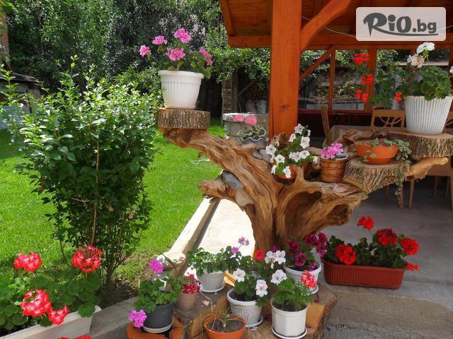 Къща за гости Виен 3* Галерия снимка №3