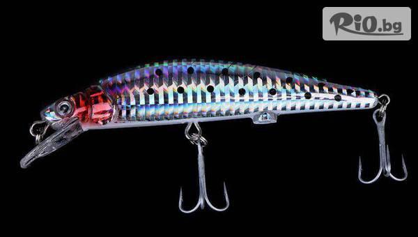 Воблер - примамка за риба #1